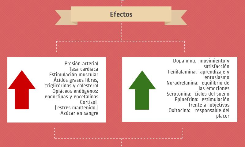 SnS y SNPS efectos